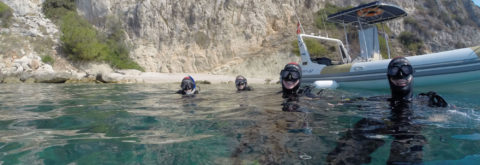 TRY DIVE EXPERIENCE